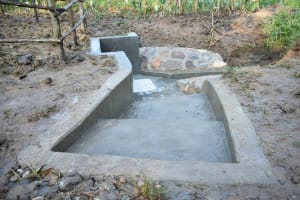 The Water Project: Sichinji Community, Kubai Spring -  Access To The Spring