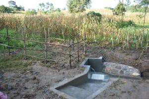 The Water Project: Sichinji Community, Kubai Spring -  Completed Kubai Spring