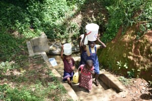 The Water Project: Mungakha Community, Asena Spring -  Ready To Bring Clean Water Home