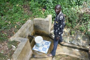The Water Project: Mungakha Community, Asena Spring -  Fetching Water
