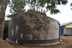 The Water Project: Kiundwani Secondary School -  Tank Cement Cures