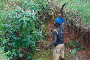 The Water Project: Ebutindi Community, Tondolo Spring -  Site Clearence