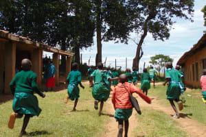 The Water Project: St. Kizito Kimarani Primary School -  Girls Running To Their Latrines During Break