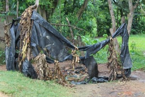 The Water Project: Mukoko Baptist Primary School -  Boys Urinal
