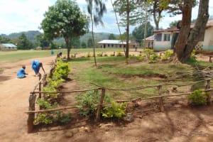 The Water Project: Lwombei Primary School -  School Landscape