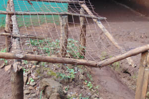 The Water Project: Gamalenga Primary School -  Dishrack