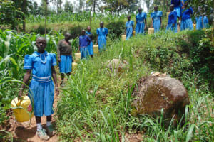 The Water Project: Lwombei Primary School -  Students Heading To Collect Water