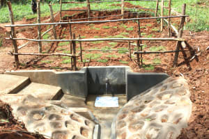 The Water Project: Ebutindi Community, Tondolo Spring -  Completed Spring