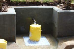 The Water Project: Bumavi Community, Joseph Njajula Spring -  Clean Water Flows