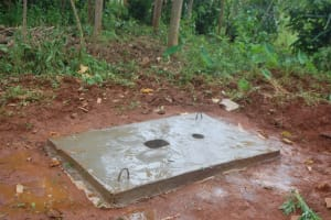 The Water Project: Shisere Community, Richard Okanga Spring -  Completed Sanitation Platform