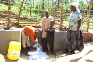 The Water Project: Bumavi Community, Joseph Njajula Spring -  Happy Spring Users