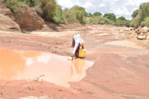 The Water Project: Kasioni Community B -  Fetching Water