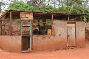 The Water Project: Kiteta Community -  Chicken Coop