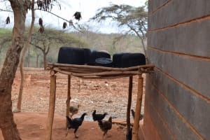 The Water Project: Kiteta Community -  Disk Drying Rack