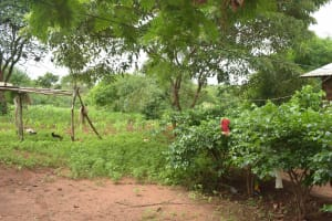 The Water Project: Mbitini Community -  Clothesline