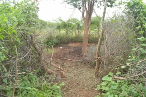 The Water Project: Mbitini Community A -  Cattle Pen