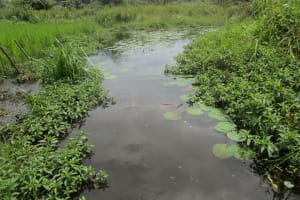 The Water Project: Lokomasama, Bompa, DEC Bompa Primary School -  Alternate Water Source
