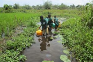 The Water Project: Lokomasama, Bompa, DEC Bompa Primary School -  Fetching Water