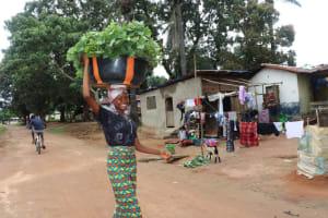 The Water Project: Lungi, Mahera, Mahera Health Clinic -  Selling Potato Leaves