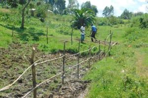 The Water Project: Sambaka Community, Sambaka Spring -  Fencing Continues