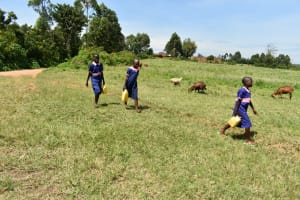 The Water Project: Eshimuli Primary School -  Students Carrying Water
