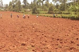The Water Project: Shikhombero Community, Atondola Spring -  Community Members Working On A Farm