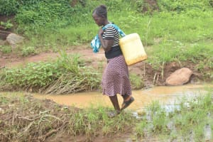 The Water Project: King'ethesyoni Community -  Carrying Water