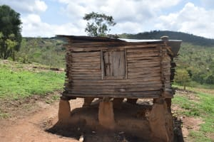 The Water Project: Nduumoni Community A -  Chicken Coop