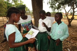 The Water Project: Lokomasama, Menika, DEC Menika Primary School -  Students Work On Disease Transmission Activity