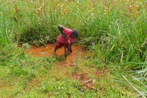 The Water Project: Shikhombero Community, Atondola Spring -  Constructing Drainage Channel