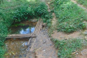 The Water Project: Shivembe Community, Murumbi Spring -  Unprotected Spring Source