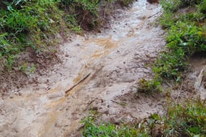 The Water Project: Kabinjari Primary School -  Slippery Road To The Spring