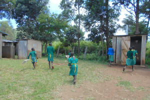 The Water Project: St. Peters Bwanga Primary School -  Girls Rushing To The Latrinesl