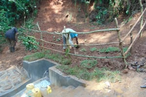 The Water Project: Kisasi Community, Edward Sabwa Spring -  Grass Planting And Fencing