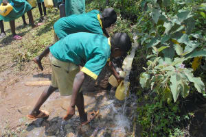 The Water Project: St. Peters Bwanga Primary School -  Students Fetching Runoff Water
