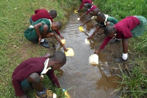 The Water Project: Wavoka Primary School -  Students Collecting Water At The Stream