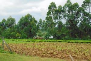 The Water Project: Kapsegeli KAG Primary School -  Community Farm Outside Of School
