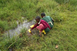 The Water Project: Wavoka Primary School -  Students Collecting Water