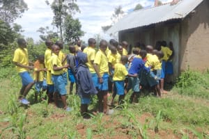 The Water Project: Isikhi Primary School -  The Gents Queueing At The Latrines