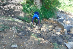 The Water Project: Buyangu Community, Mukhola Spring -  Backfilling With Stones