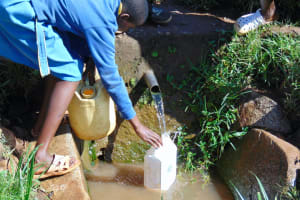 The Water Project: Gimomoi Primary School -  Student Collects Water At The Spring