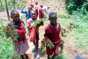 The Water Project: Shivembe Community, Murumbi Spring -  Kids Carry Grass To Plant