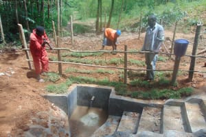 The Water Project: Shivembe Community, Murumbi Spring -  Fencing And Grass Planting