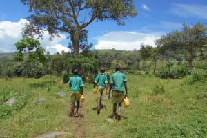 The Water Project: St. Peters Bwanga Primary School -  Students Going Through Bushes Carrying Water