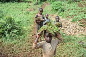 The Water Project: Busichula Community, Marko Spring -  Children Carry Grass To Be Planted At The Spring