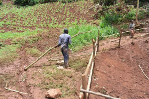 The Water Project: Busichula Community, Marko Spring -  Artisan Hauls A Large Branch For The Fencing