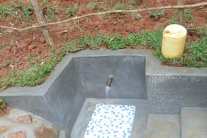 The Water Project: Bumira Community, Imbwaga Spring -  Clean Water Flows