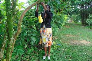 The Water Project: Buyangu Community, Mukhola Spring -  Hanging A Leaky Tin
