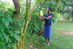 The Water Project: Buyangu Community, Mukhola Spring -  Handwashing With A Leaky Tin