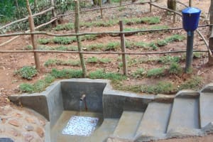 The Water Project: Shivembe Community, Murumbi Spring -  Clean Water Flows At Murumba Spring